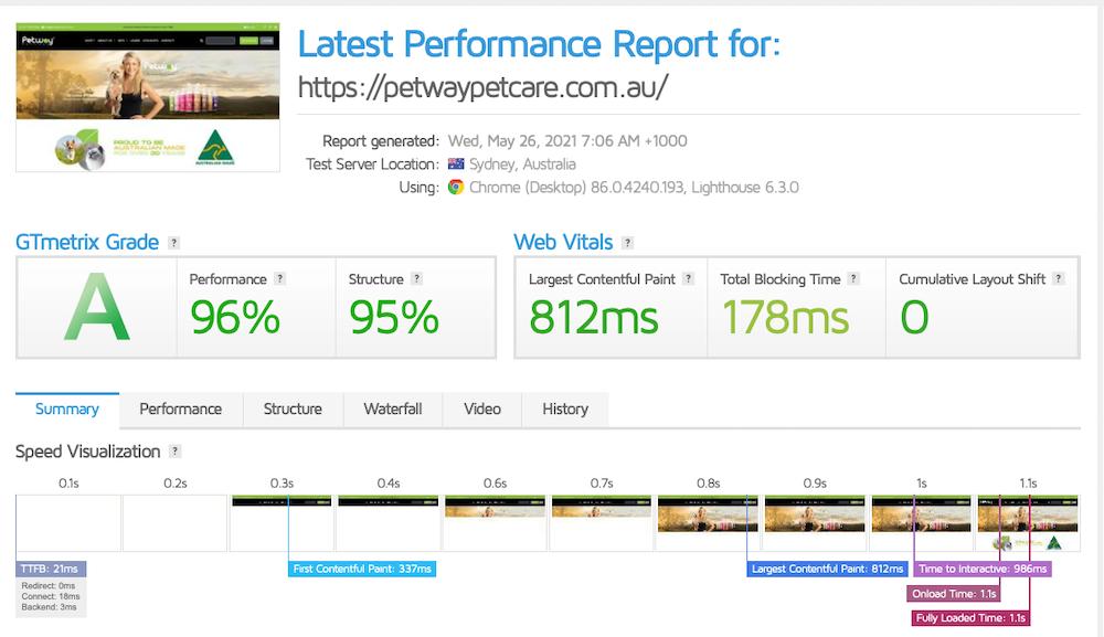 GT Metrix Petway Website Fast Score
